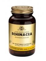 Echinacea Vegetable Capsules